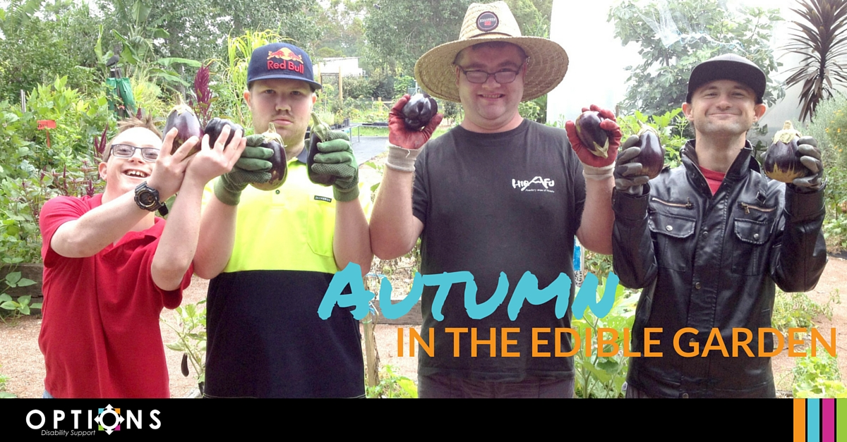 workers displaying autumn produce from the edible garden