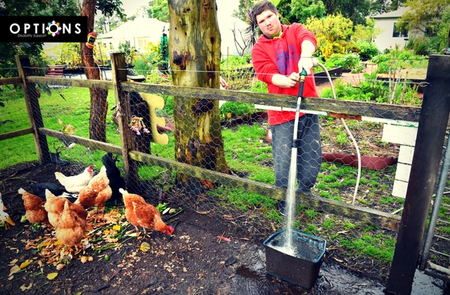 man tending to chickens in lush garden