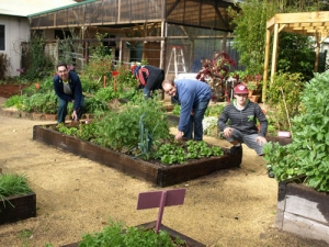 group of people working in the gardens