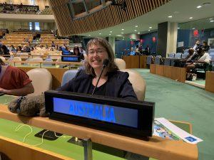 Alana at United Nations