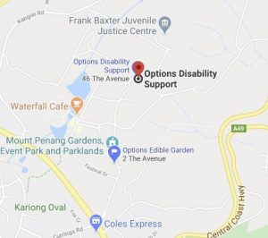 OPTIONS-DISABILITY-SUPPORT-MAP